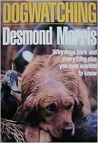 Desmond Morris Dog Watching