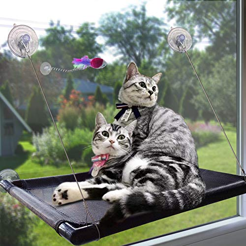 (Cat Perch Cat Window Perch Window Cat Perch Hammock Cat Window Hammock Bed Cat Window Seat Kitty Window Sunny Seat Durable Big Pet Perch With Upgraded 4 Big Suction Cups Cat Bed Holds Up To 60lbs)