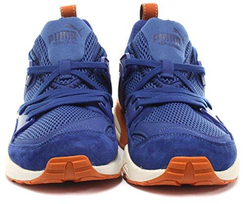 Uomo Blue Mazarine Glory Blaze Of Sneaker Puma wqHxtAXYa