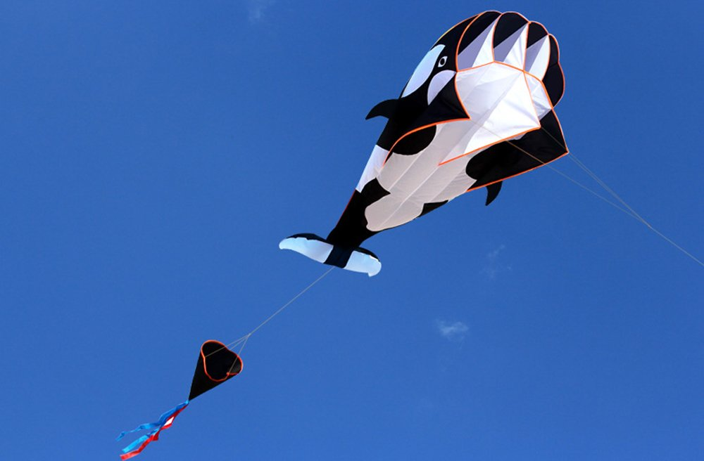 HENGDA KITE-3D Kite Huge Frameless Soft Parafoil Giant Black Dolphin Breeze Kite by HENGDA KITE (Image #3)