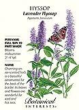 Hyssop Lavender Seeds - 250 mg - Perennial