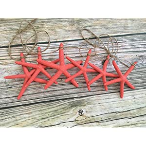 51HaKT5bFjL._SS300_ Beachy Starfish and Seashell Garlands