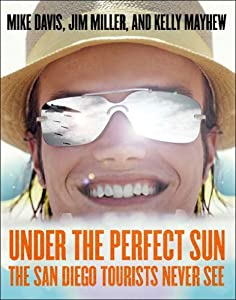 Under The Perfect Sun: The San Diego Tourists Never See from The New Press