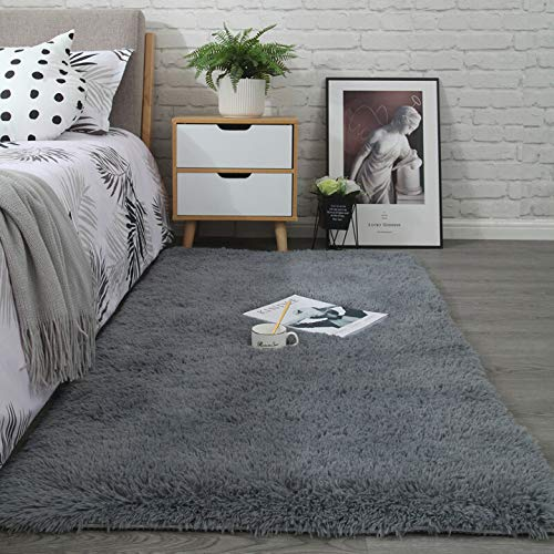Noahas Shaggy Area Rugs for Kids Nursery Fluffy Boys Girls Bedroom Rug Shag Fur Dorm Room Bedside Rug Plush Fuzzy Decorative Floor Carpet and Best Gift for Children, 3 x 5 Feets, Grey