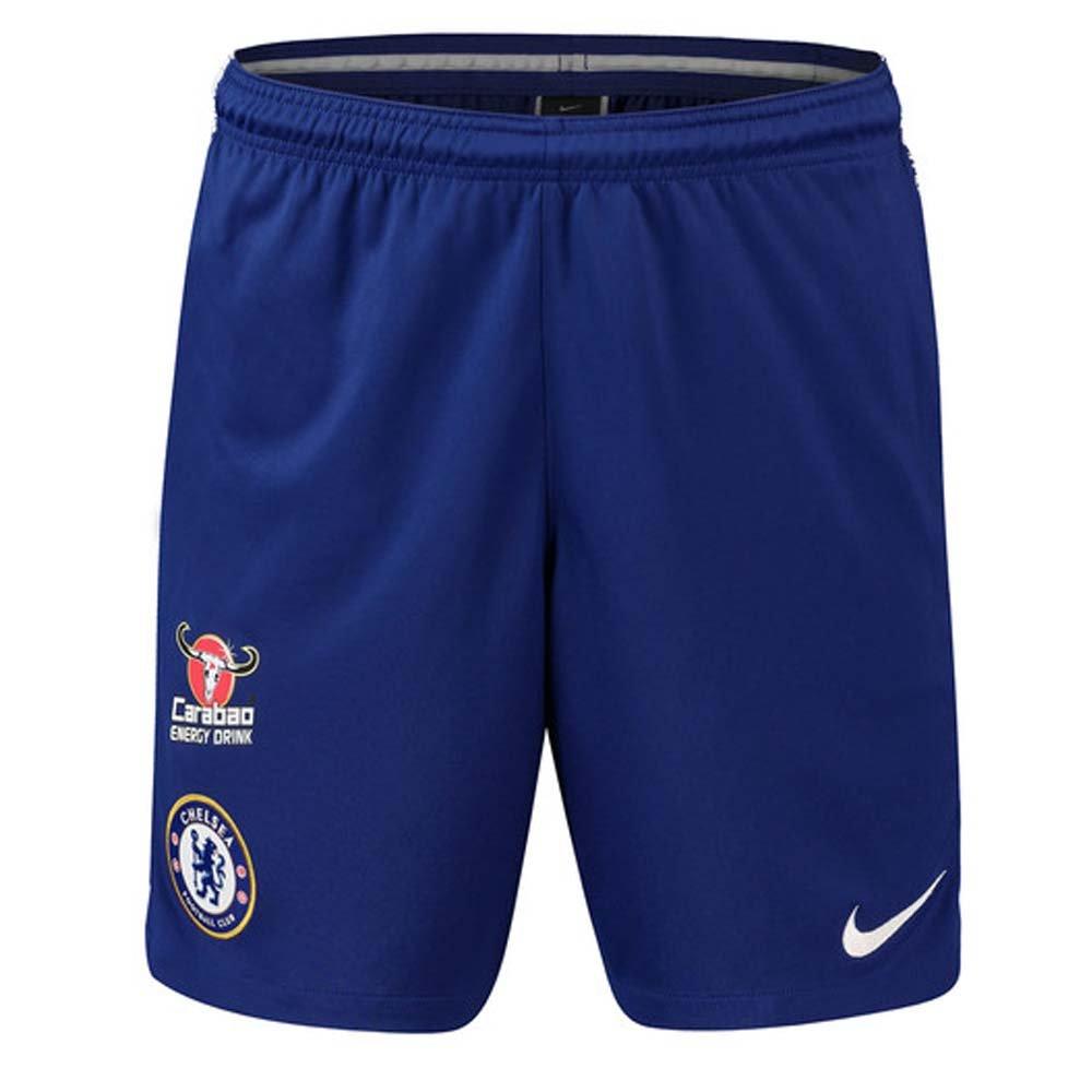 NIKE 2018-2019 Chelsea Squad Training Shorts (Blue)