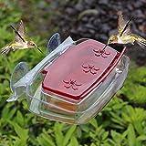 Juegoal Window Hummingbird Feeder, 8-Ounce
