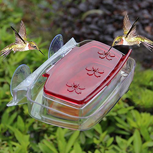Juegoal Window Hummingbird Feeder, 8-Ounce