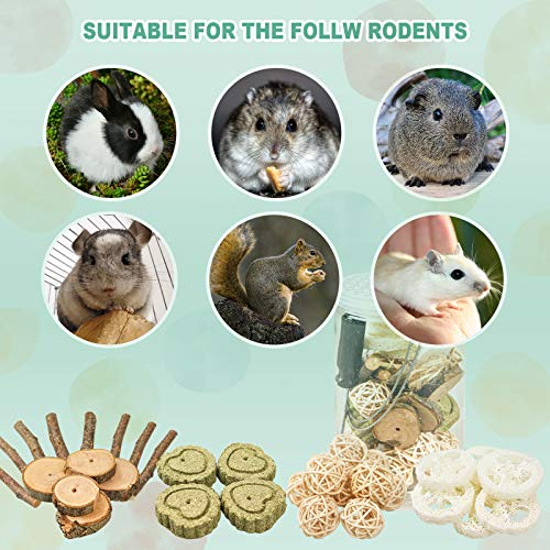 Roundler DIY Rabbit Hamster Chew Toys, Pet Snacks Molar Toys, Make a Unique Chew Toy for Small Animals, Suitable for Rabbits, Chinchillas, Guinea Pigs, Hamsters, Chewing/Playing (Style-1)