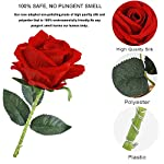 ONEVER-Beauty-and-The-Beast-Rose-Kit-Enchanted-Red-Silk-Rose-in-Dome-with-LED-Fairy-String-Lights-Remote-Control-USB-Powered-for-HerMom-Wedding-Anniversary-Valentine-Home-Decor