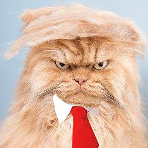 FMJI Trump Style Pet Costume Cat Wig – Donald Dog Clothes with Collar & Tie Head Wear Apparel Toy for Halloween, Christmas, Parties, Festivals