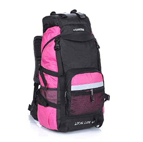 Outdoor Backpack Large Capacity 45L Color : Purple, Size : 45L 60L Travel Backpack Outdoor Mountaineering Bag