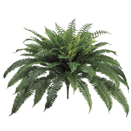 allstate-floral-new-boston-fern-bush-32-inch-pack-of-2