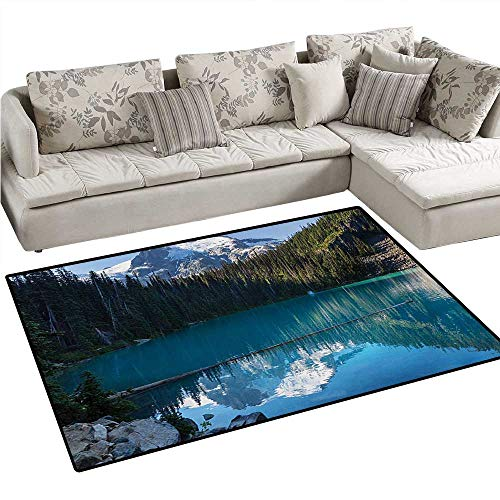 Landscape Door Mats for Inside Lake in Northern Canada with Slim Trees and Snowy Frozen Mountain Novelty Bath Mat for Bathroom Mat 36