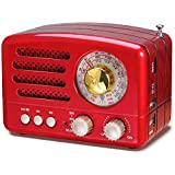 PRUNUS J-160 Transistor AM FM Radio Small Portable Retro Radio with Bluetooth, Rechargeable Battery Operated, Support TF Card