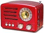 PRUNUS J-160 Transistor AM FM Radio Small Portable Retro Radio with