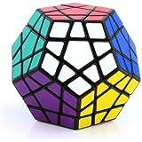 Lychee 12 Faces Shengshou Megaminx Noir Speed   Puzzle Cube Speedcube