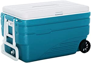 LIYANBWX Portable 100L Wheeled Cooler Refrigerator/Freezer for Car and Home with Handle