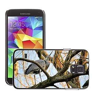 GoGoMobile Slim Protector Hard Shell Cover Case // M00123514 Heron Bird Tree Animal Wildlife // Samsung Galaxy S5 S V SV i9600 (Not Fits S5 ACTIVE)