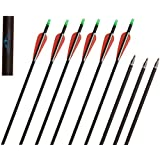 Huntingdoor Carbon 31-Inch Arrows with Field Points Replaceable Tips (12 Pack)