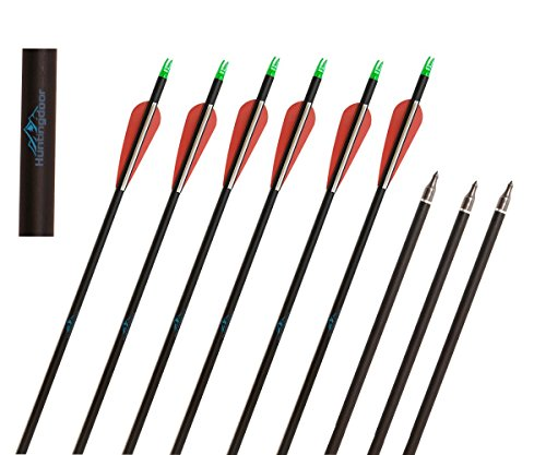 Huntingdoor-Carbon-31-Inch-Arrows-with-Field-Points-Replaceable-Tips-12-Pack