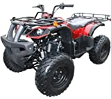 Brand New 150cc GY6 Engine with a CVT