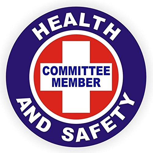 1-Pc First-Rate Unique Health And Safety Committee Member Window Stickers Mac Macbook Laptop Luggage Wall Graphics Electrical Flash Arc Helmet Decals Decor Vinyl Art Sticker Decal Patches Size - Ray Cartoon Bans