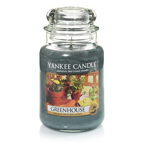 Buy yankee candle green house