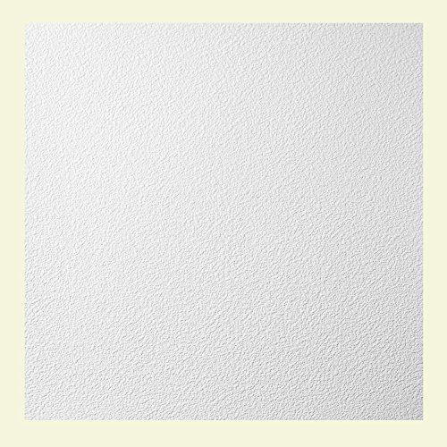 Genesis Easy Installation Stucco Pro Lay-In White Ceiling Tile/Ceiling Panel, Carton of 12 (2' x 2' Tile) by Genesis (Image #1)