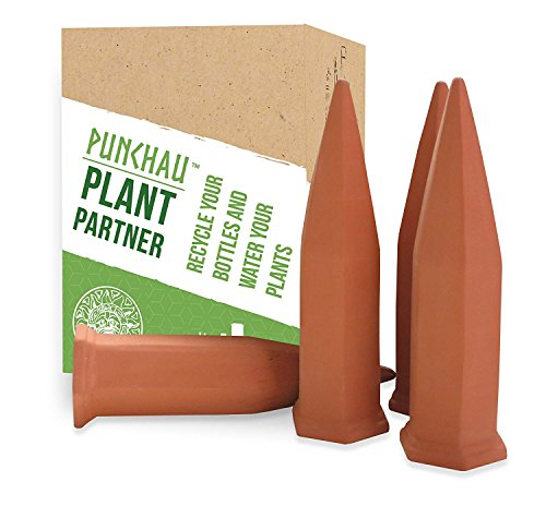 Terracotta Plant Waterer - Perfect for Vacation