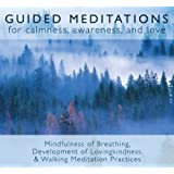 Guided Meditations: For Calmness,Awareness & Love by Bodhipaksa on 12/02/2004 unknown edition