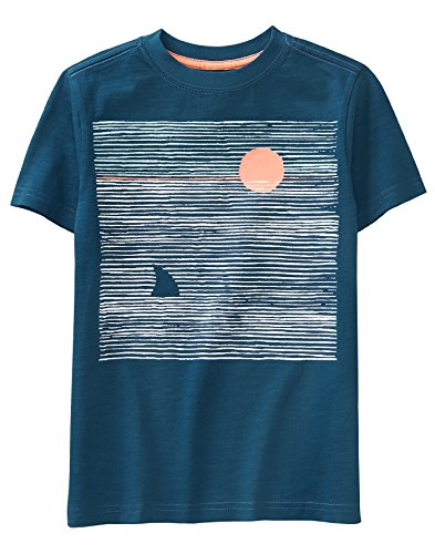 (Gymboree Boys' Little Short Sleeve Fun Graphic Tee, Gym Navy M)