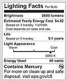 Satco S7336 40 Watt (150 Watt) 2600 Lumens Hi-Pro Spiral CFL Daylight White 5000K Medium Base 120 Volt Light Bulb