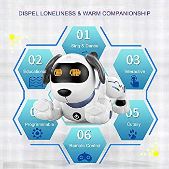 Goolsky Electronic Pets Robot Dog Stunt Dog Voice Command Programmable Touch-sense Music Song Toy for Kids Birthday LE NENG TOYS K16A