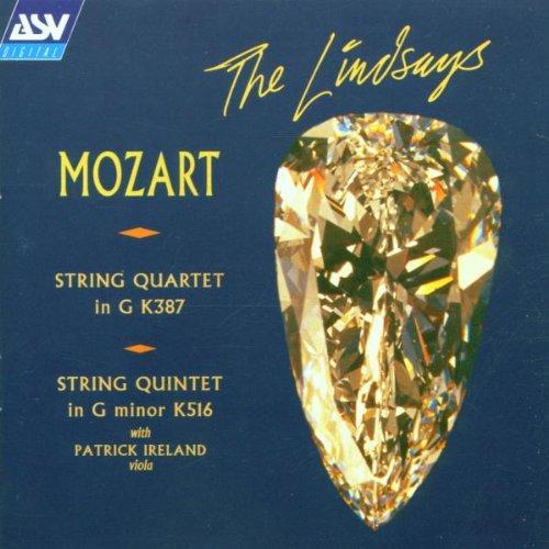 Mozart String Quartet In G Major K 387 Analysis Essay - image 4
