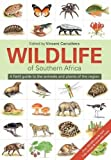 Wildlife of Southern Africa%3A A field g...
