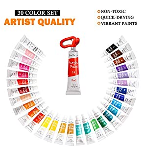 46 Pack Acrylic Paint Set, Shuttle Art 30 Colors Acrylic Paint with 10 Paint Brushes 3 Painting Canvas 1 Paint Knife Palette Sponge, Complete Gift Set for Kids, Adults Painting Canvas, Wood, Ceramic