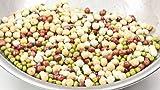 Todd's Seeds Protein Bean Sprouting Seed Mix; Green Pea, Mung Bean, Adzuki, Garbanzo - 1 Pound
