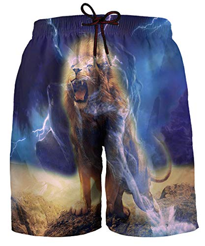 Hgvoetty Quick Dry Swim Trunks for Men Cool 3D Printed Lion Summer Surf Shorts XL
