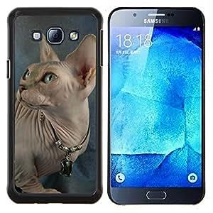 TECHCASE---Cubierta de la caja de protección para la piel dura ** Samsung Galaxy A8 ( A8000 ) ** --Peterbald Donskoy Gato sin pelo