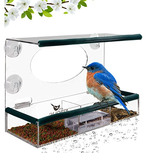 Pole Mount Seed Catcher Platform (Birdious Window Bird Feeder – Enjoy Unique Watch Small & Large Birds. Clear See Through Birdhouse, Mounted By 4 Strong Suction Cups, Removable Tray, Squirrel Proof. Unusual Gifts for Kids, Bird Lovers)
