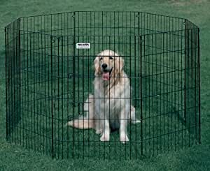 Ultimate Exercise Pen - 48 Inches High