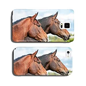 Portrait of two horses in summer cell phone cover case iPhone6 Plus