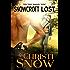 Snowcroft Lost (Snowcroft Men Book 1)