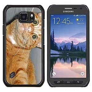 EJOOY---Cubierta de la caja de protección para la piel dura ** Samsung Galaxy S6Active Active G890A ** --American Shorthair felino gato feliz