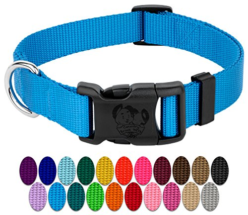 Country Brook Petz | Vibrant 21 Color Selection | Deluxe Nylon Dog Collar (Ice Blue, Large, 1 Inch Wide)