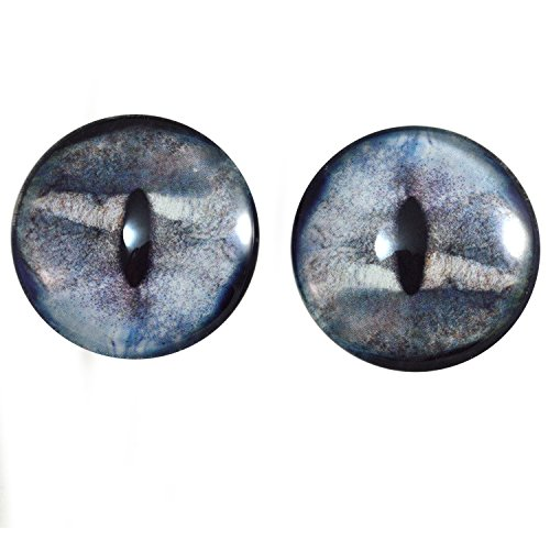 Extra Large 40mm Pair of Shark Glass Eyes, for Jewelry Making, Dolls, Sculptures, More -