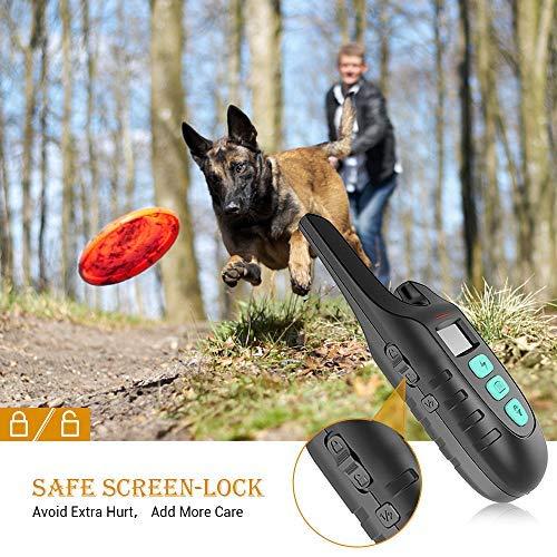 Amazon.com: Collar de entrenamiento para perro HOLDOG ...