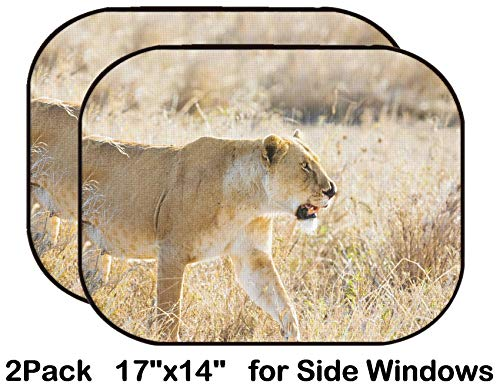 Liili Car Sun Shade for Side Rear Window Blocks UV Ray Sunlight Heat - Protect Baby and Pet - 2 Pack Image ID: 24709525 Close up of Lioness with a Nose Injury in Serengeti Photo from ()