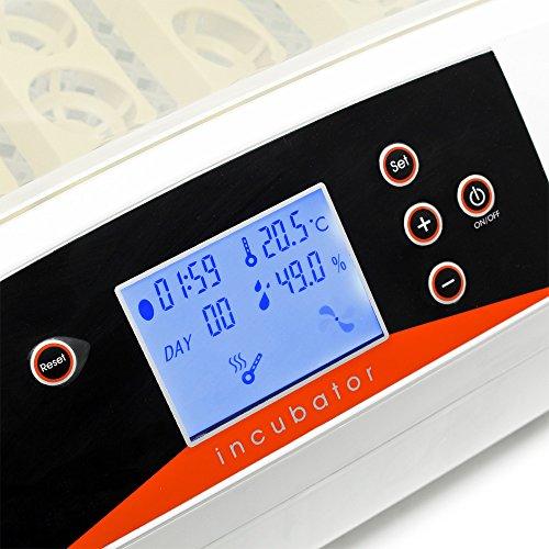 WilTec Couveuse Automatique 56 Oeufs Incubateur Éclosoir  Amazon.fr   Animalerie 7b97328181ea