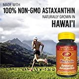 BioAstin Hawaiian Astaxanthin 4mg, 60 Count